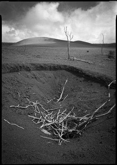 Devastation Trail, Hawaii Volcanoes National Park, HI 1985 © David Ulrich