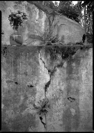 Cemetery, Kona Coast, HI 1985 © David Ulrich