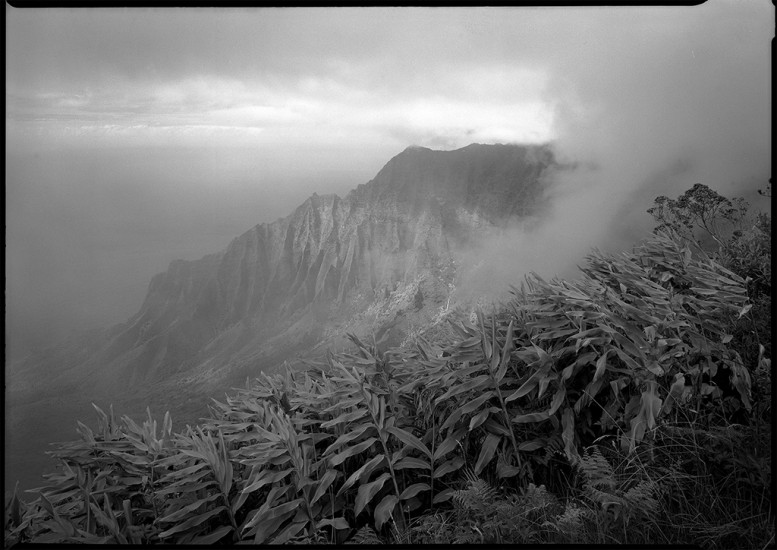 Kalalau Overlook, Kauai, HI 1987 © David Ulrich