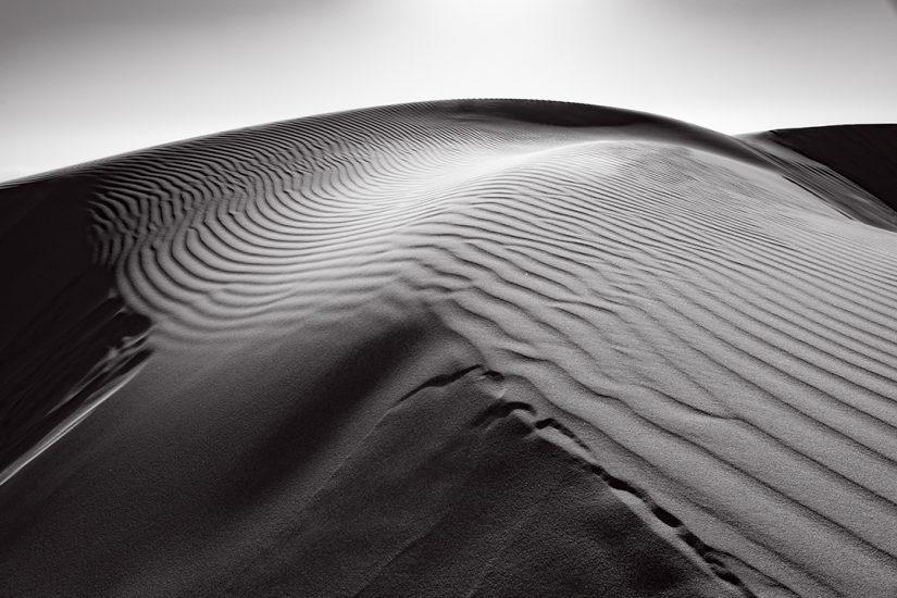 Oceano Dunes #28, CA, 2018
