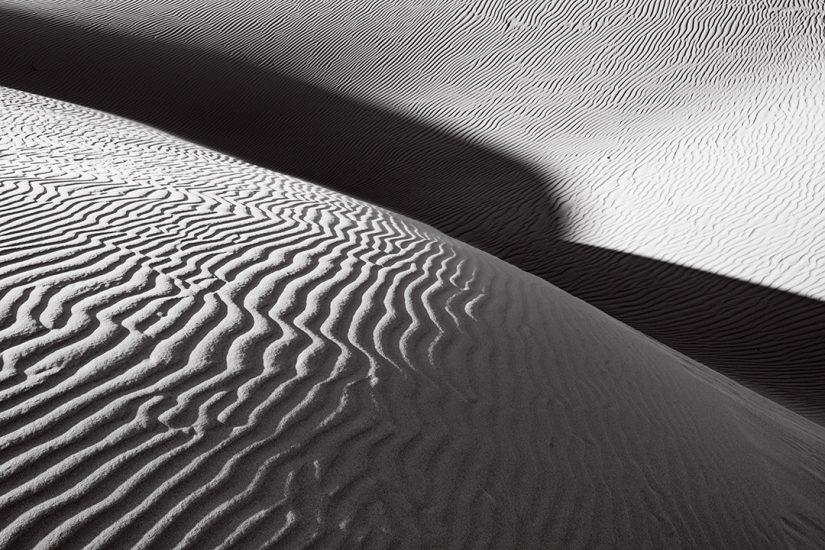 Oceano Dunes #14, CA 2018