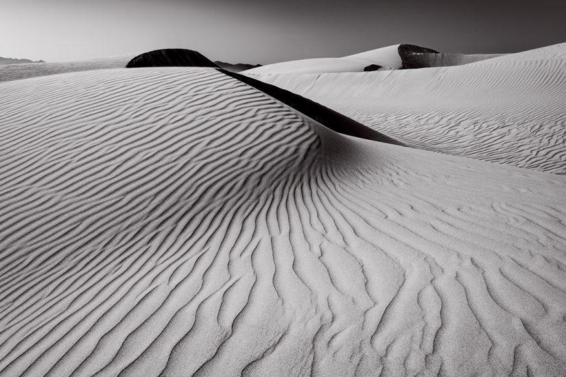 Oceano Dunes #16, CA 2018
