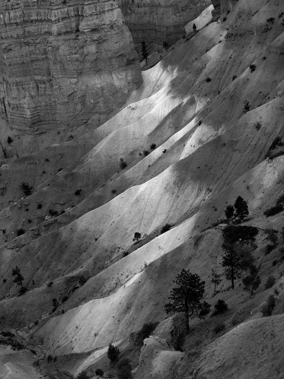 Bryce Canyon, Utah 1974 © David Ulrich
