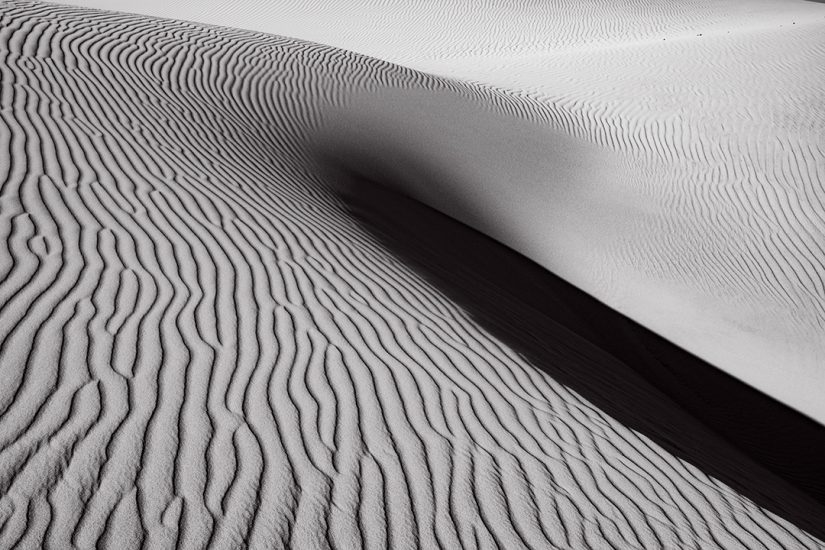 Oceano Dunes #60, CA 2018